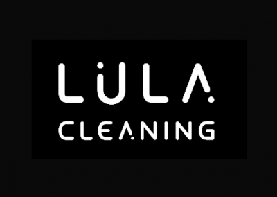 Lula.Cleaning – a SMM and FB ads strategy created from scratch