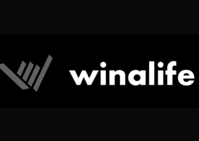 Winalife – strategy and branding for a Software House